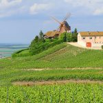 France-Champagne-vineyards-Verzenay-Mill
