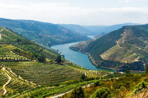 Duoro River Valley Portugal